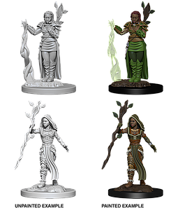 Dungeons & Dragons Nolzur's Marvelous Minis: Human Female Druid
