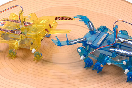 2-Channel Remote Control: Insect Battle Set (71120)