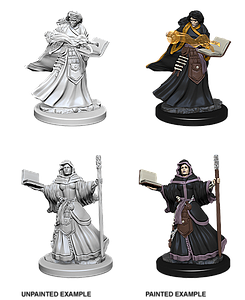 Dungeons & Dragons Roleplaying Game Unpainted Miniatures: Human Wizard