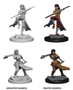 Dungeons & Dragons Roleplaying Game Unpainted Miniatures: Human Monk