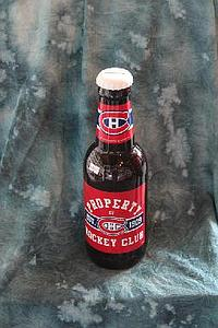 "NHL 14"" Plastic Bottle Banks: Montreal Canadiens"