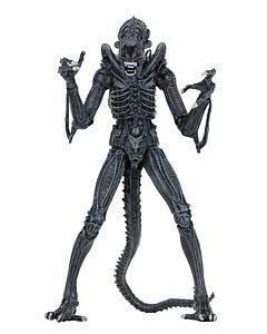 Aliens - Ultimate Alien Warrior (Blue)