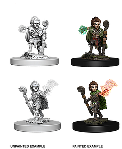 Dungeons & Dragons Roleplaying Game Unpainted Miniatures: Mini-Gnome Male Druid