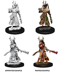 Dungeons & Dragons Nolzur's Marvelous Unpainted Miniatures: Female Human Druid