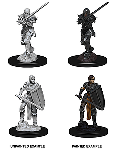Dungeons & Dragons Nolzur's Marvelous Unpainted Miniatures: Female Human Fighter