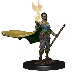 Dungeons & Dragons Icons of the Realms: Elf Female Druid